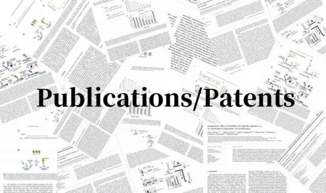 論文 / 特許のイメージ画像